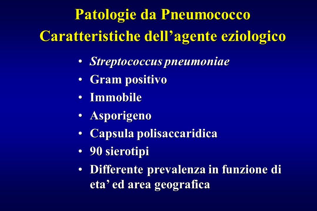 Patologie da Pneumococco Caratteristiche dell'agente eziologico Streptococcus pneumoniaeStreptococcus pneumoniae Gram positivoGram positivo ImmobileIm