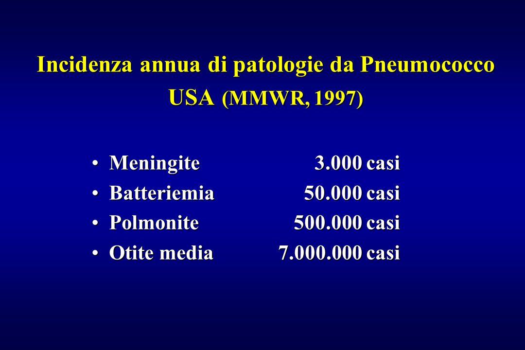 Incidenza annua di patologie da Pneumococco USA (MMWR, 1997) Meningite 3.000 casiMeningite 3.000 casi Batteriemia 50.000 casiBatteriemia 50.000 casi P