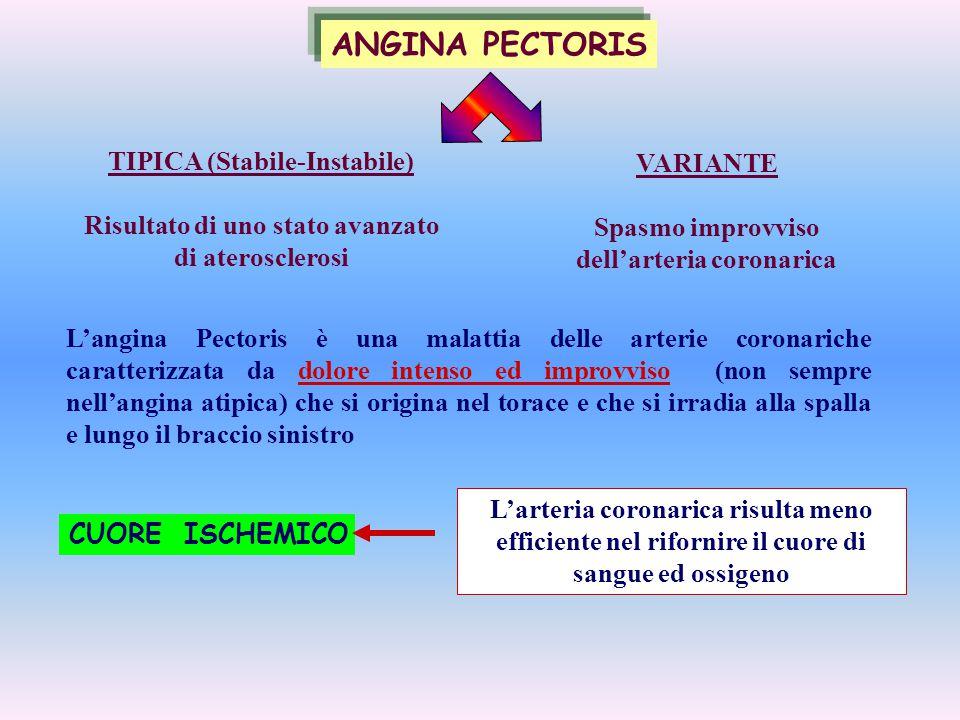 L'angina Pectoris è una malattia delle arterie coronariche caratterizzata da dolore intenso ed improvviso (non sempre nell'angina atipica) che si orig