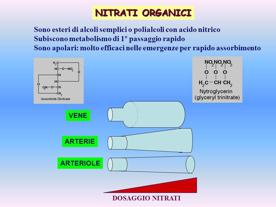 Sono esteri di alcoli semplici o polialcoli con acido nitrico Subiscono metabolismo di 1º passaggio rapido Sono apolari: molto efficaci nelle emergenz