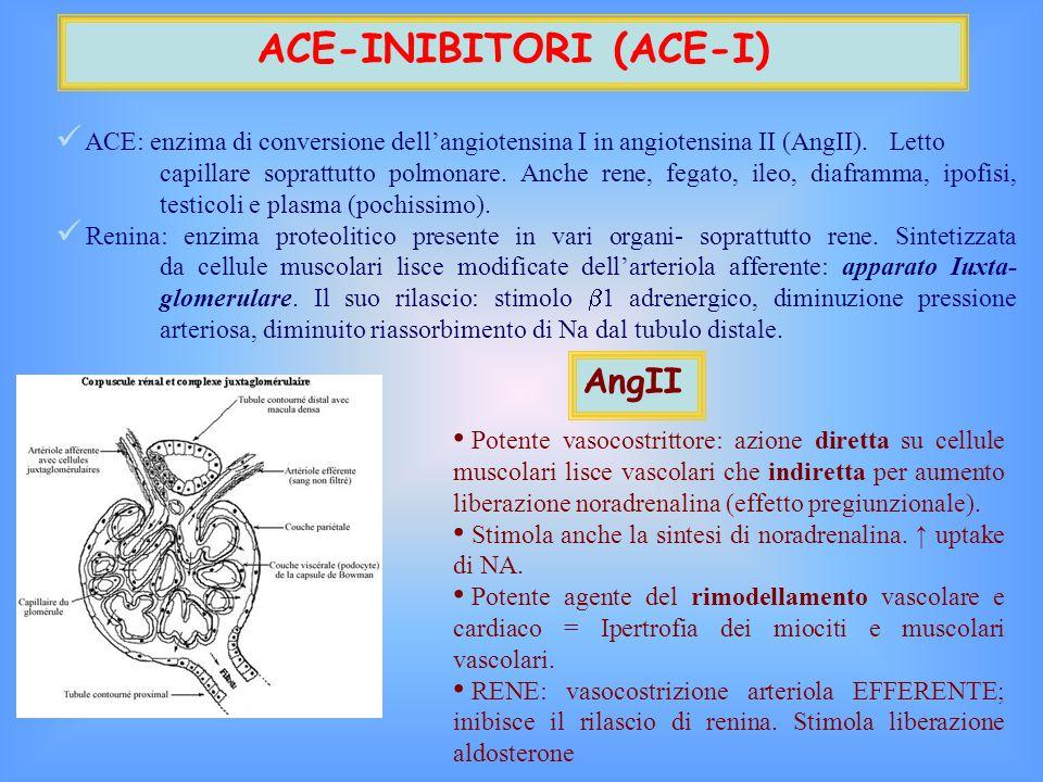ACE-INIBITORI (ACE-I) ACE: enzima di conversione dell'angiotensina I in angiotensina II (AngII).