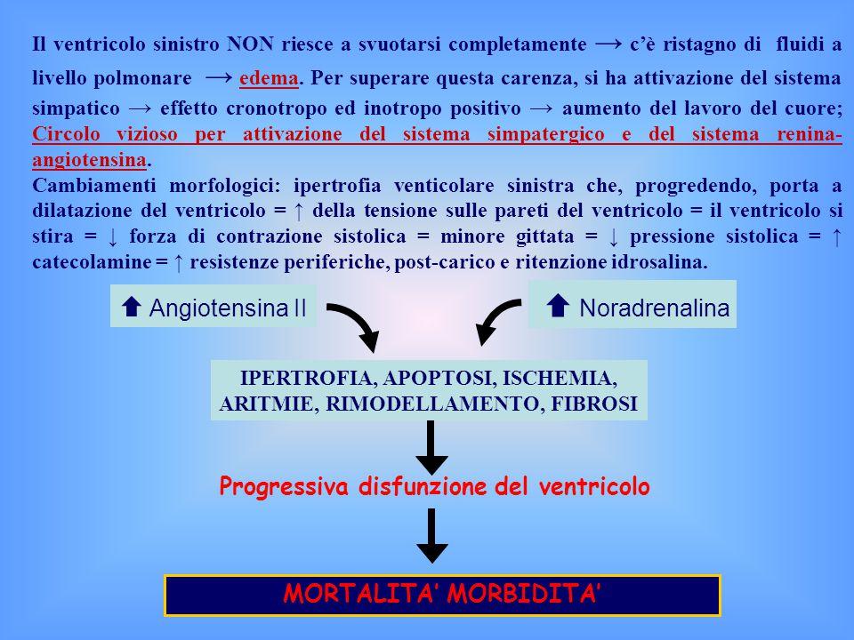 Il ventricolo sinistro NON riesce a svuotarsi completamente → c'è ristagno di fluidi a livello polmonare → edema.