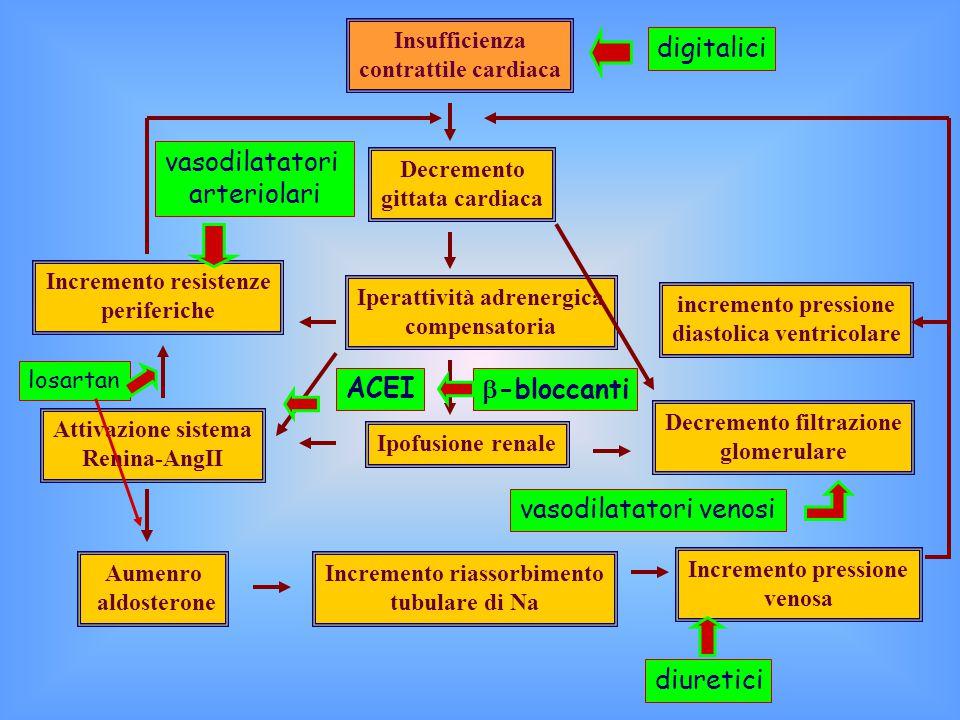 Insufficienza contrattile cardiaca Decremento gittata cardiaca Iperattività adrenergica compensatoria Ipofusione renale Incremento riassorbimento tubulare di Na Incremento pressione venosa Decremento filtrazione glomerulare Incremento resistenze periferiche Attivazione sistema Renina-AngII Aumenro aldosterone incremento pressione diastolica ventricolare diuretici vasodilatatori venosi digitalici vasodilatatori arteriolari ACEI  -bloccanti losartan