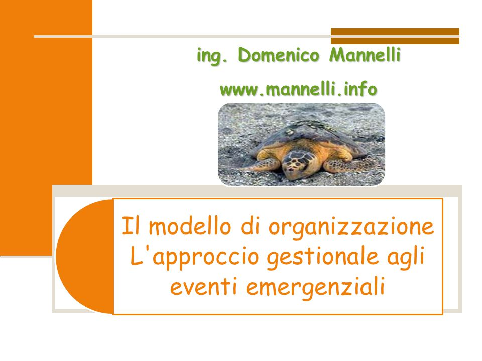 Il modello di organizzazione L approccio gestionale agli eventi emergenzialiing.