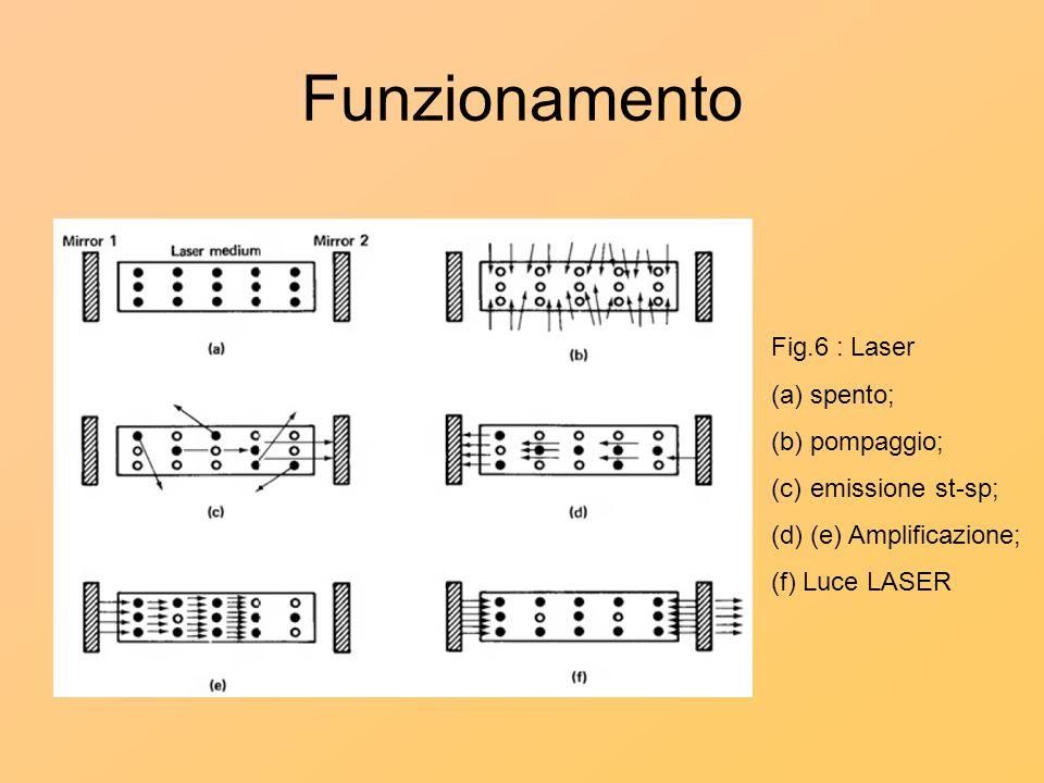 Funzionamento Fig.6 : Laser (a)spento; (b)pompaggio; (c)emissione st-sp; (d)(e) Amplificazione; (f) Luce LASER