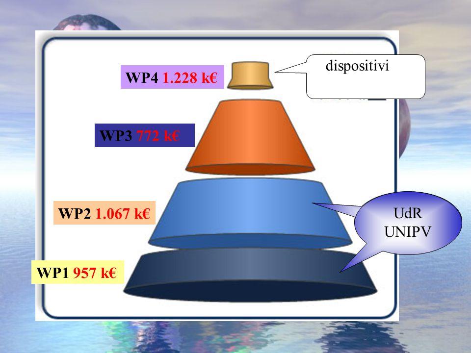 WP1 957 k€ WP2 1.067 k€ WP4 1.228 k€ WP3 772 k€ dispositivi UdR UNIPV