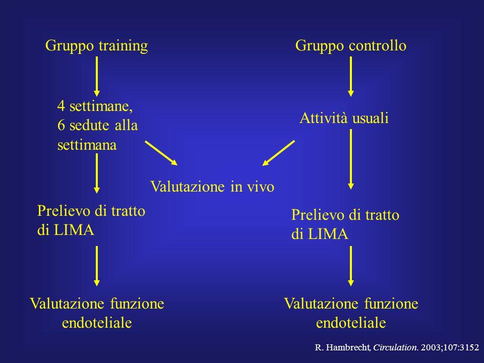 Gruppo trainingGruppo controllo 4 settimane, 6 sedute alla settimana Prelievo di tratto di LIMA Valutazione funzione endoteliale Attività usuali Valut
