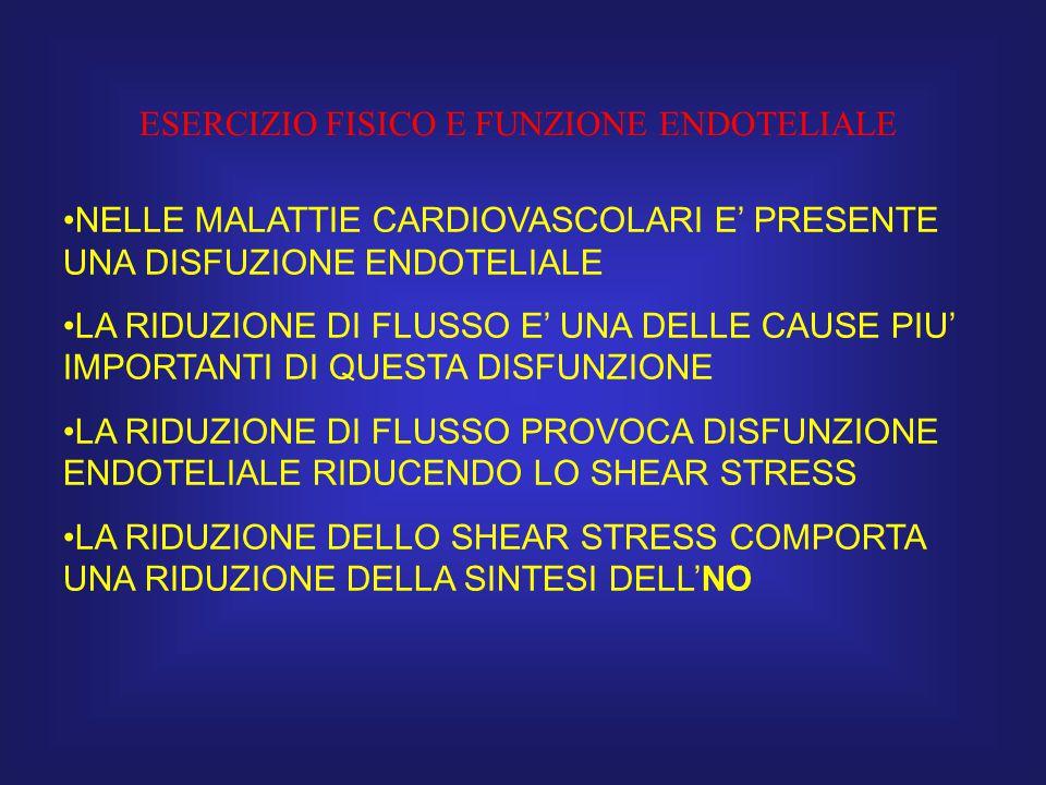 ESERCIZIO FISICO E FUNZIONE ENDOTELIALE NELLE MALATTIE CARDIOVASCOLARI E' PRESENTE UNA DISFUZIONE ENDOTELIALE LA RIDUZIONE DI FLUSSO E' UNA DELLE CAUS