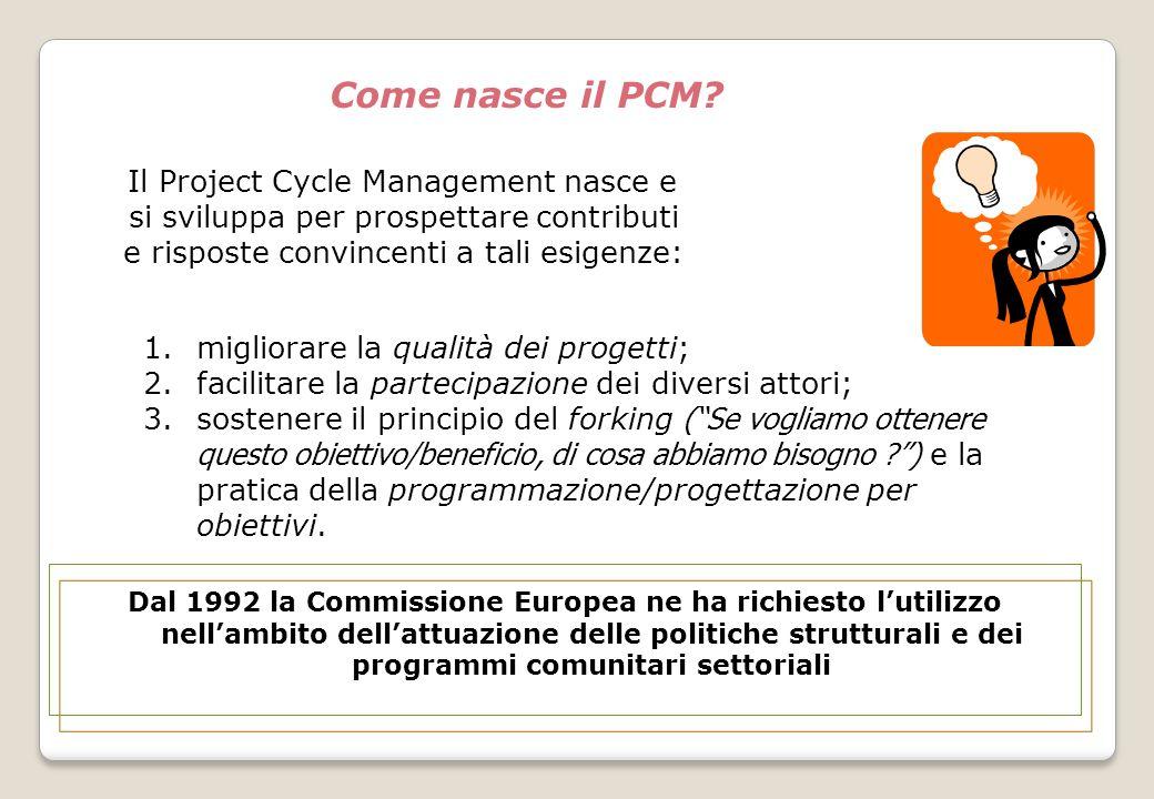 Perchè nasce il PCM?