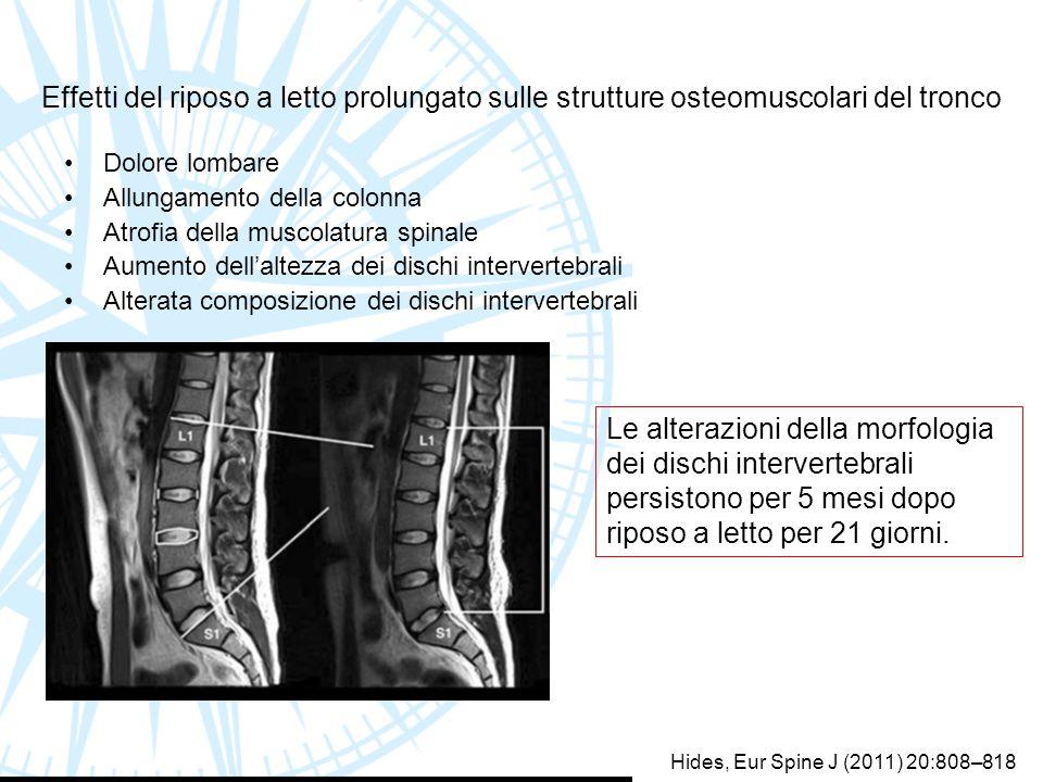 Effetti del riposo a letto prolungato sulle strutture osteomuscolari del tronco Dolore lombare Allungamento della colonna Atrofia della muscolatura sp