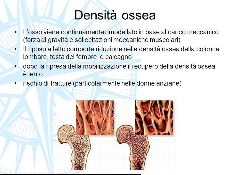 Densità ossea L'osso viene continuamente rimodellato in base al carico meccanico (forza di gravità e sollecitazioni meccaniche muscolari) Il riposo a