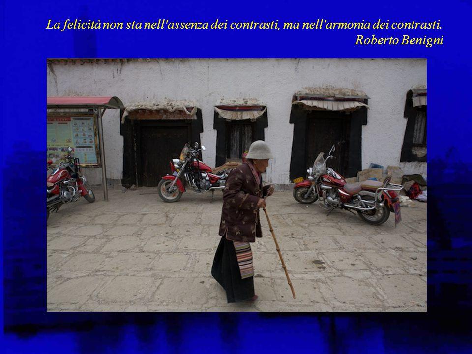 La felicità non sta nell assenza dei contrasti, ma nell armonia dei contrasti. Roberto Benigni