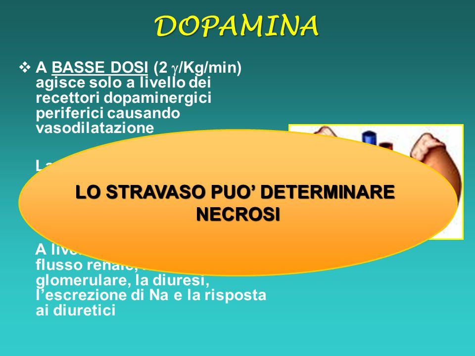  A BASSE DOSI (2  /Kg/min) agisce solo a livello dei recettori dopaminergici periferici causando vasodilatazione La vasodilatazione avviene prevalen