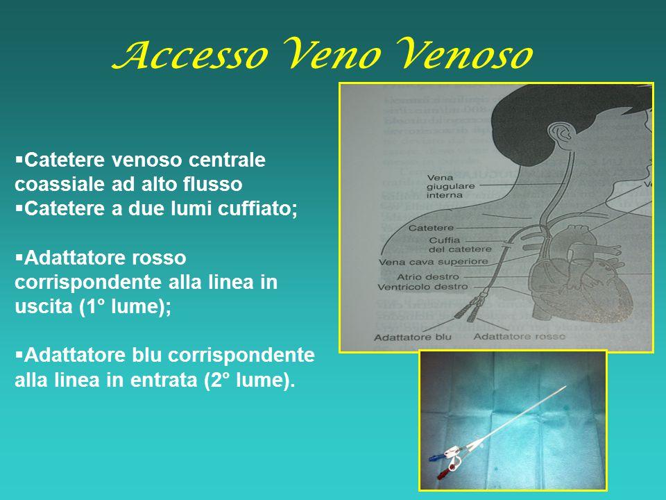  Catetere venoso centrale coassiale ad alto flusso  Catetere a due lumi cuffiato;  Adattatore rosso corrispondente alla linea in uscita (1° lume);