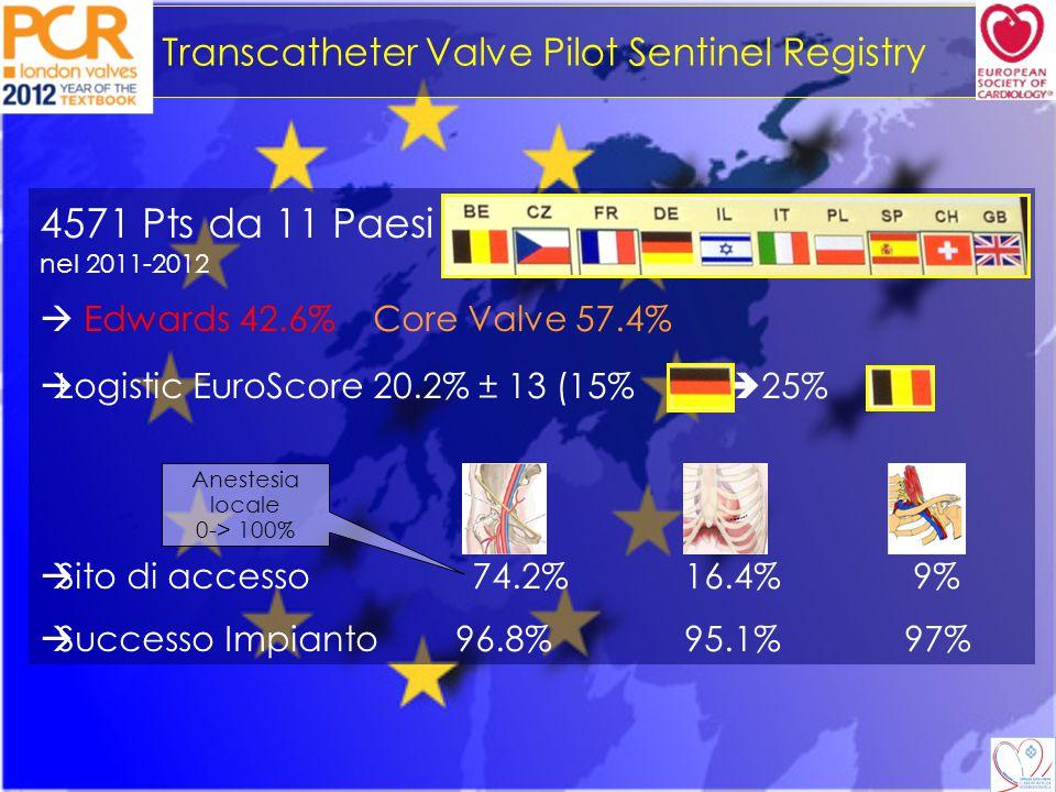Transcatheter Valve Pilot Sentinel Registry Caratteristiche Basali p DM26.8%29.9%30.9%0.07 COPD25.3%22.3%31.7%<0.01 Dialisi6.1%7.5%12.6%<0.01 Pregresso IMA 15.4%22.1%19.9%<0.01 Precedente intervento 16.2%30.2%14.2%<0.01 Precedente AVR 1.7%1.02%1.6%ns FE <30% 5%5.6%15.2%ns FE 30-50% 27.1%29.6%29.1%ns FE > 50% 67.9%64.8%58.7%ns CAD > 1 vaso 18.8%23.3%24.8%<0.01 Log Euroscore 19.9±12.922.2±14.221.6±13.9<0.01 PAD  Alto Rischio
