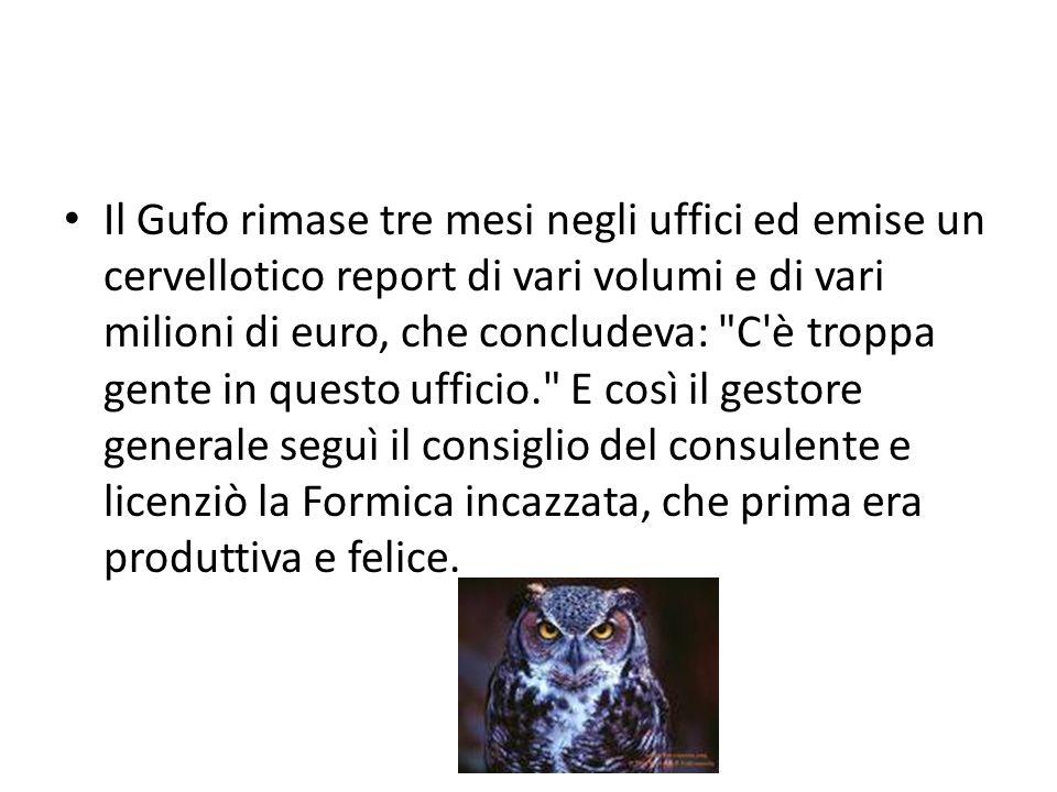 Il Gufo rimase tre mesi negli uffici ed emise un cervellotico report di vari volumi e di vari milioni di euro, che concludeva: