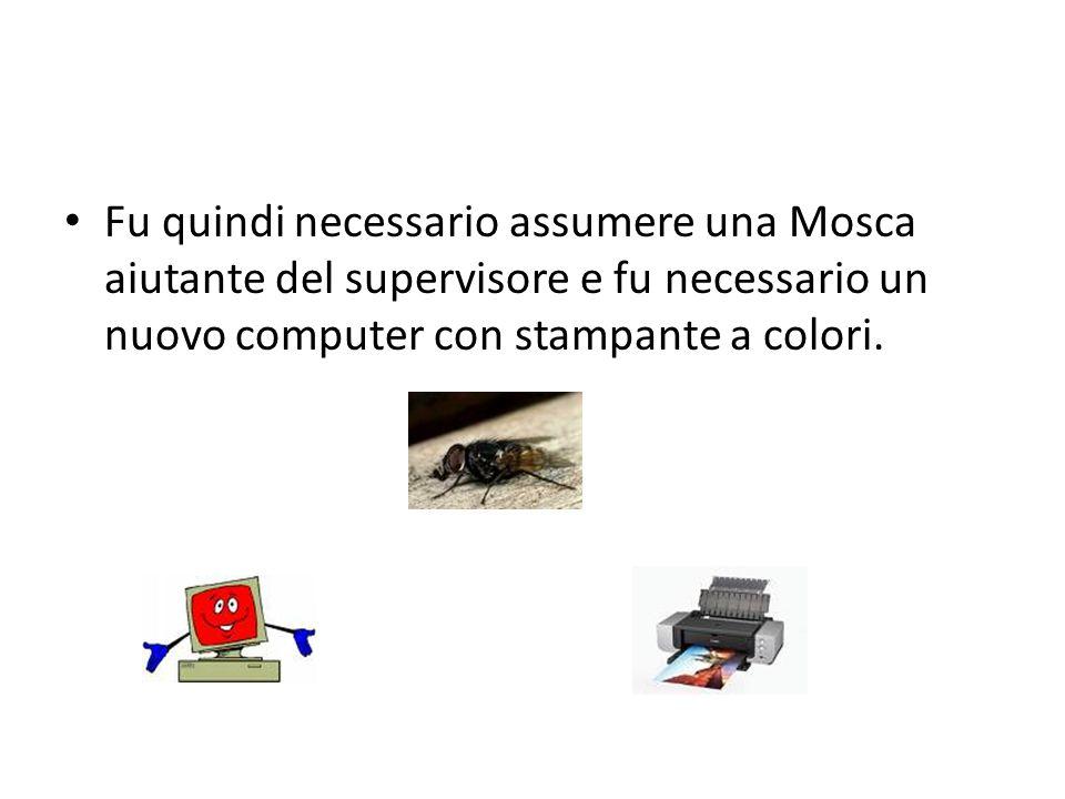 Fu quindi necessario assumere una Mosca aiutante del supervisore e fu necessario un nuovo computer con stampante a colori.
