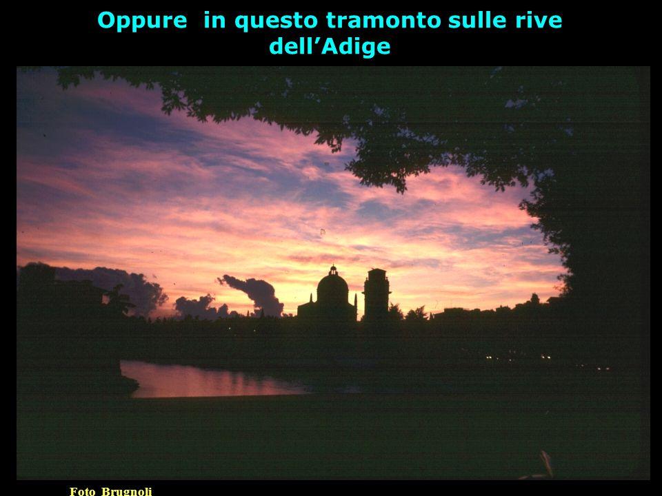 Oppure in questo tramonto sulle rive dell'Adige Foto Brugnoli