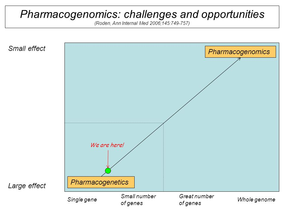 Pharmacogenomics: challenges and opportunities (Roden, Ann Internal Med 2006;145:749-757) Small effect Large effect Single geneWhole genome Small number of genes Great number of genes Pharmacogenetics Pharmacogenomics We are here!