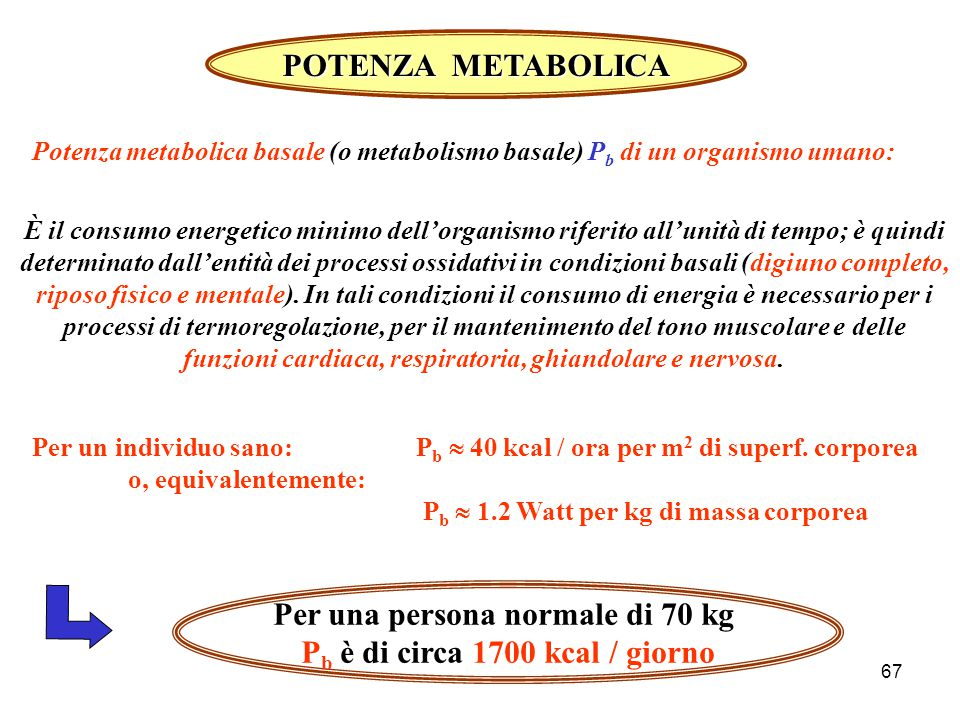 66 Tasso metabolico (approssimato) per una persona di 65 kg Attività Tasso metabolico Attività Tasso metabolico kcal/hwatt = J/s =============================================== =============================================== Dormire 60 70 Stare seduti 100 115 Attività leggera (mangiare, vestirsi) 200 230 Correre (v = 15 km/h)10001150