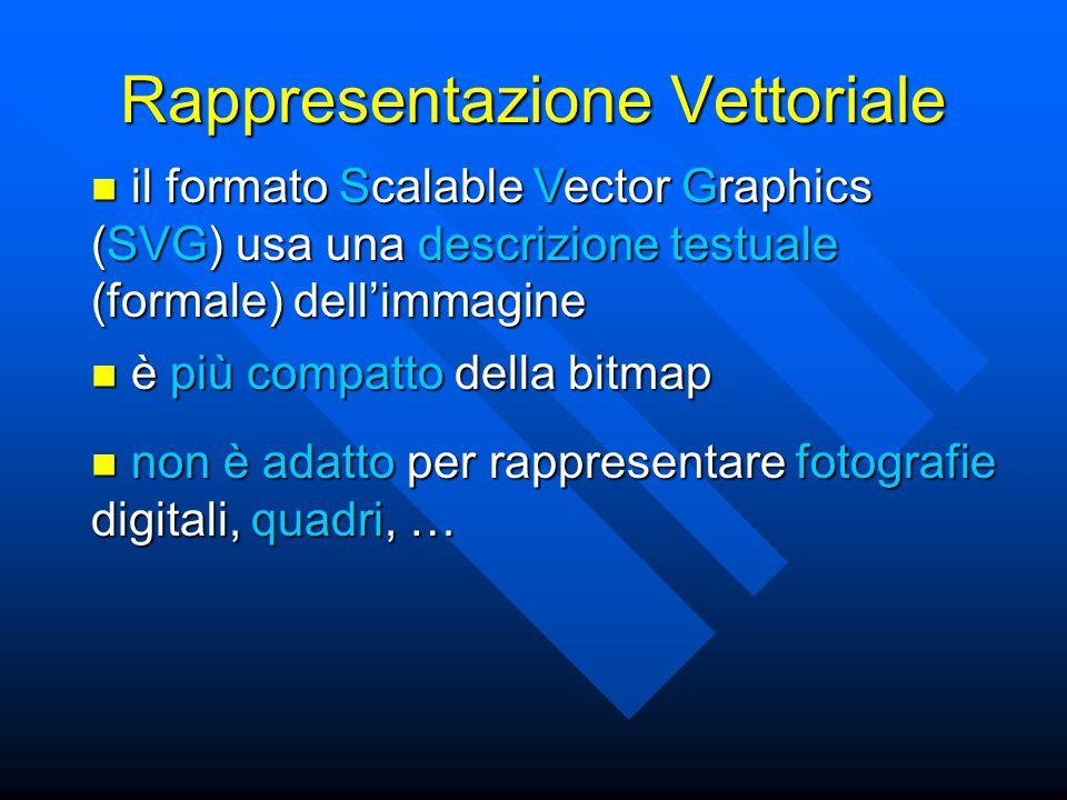 Rappresentazione Vettoriale il formato Scalable Vector Graphics (SVG) usa una descrizione testuale (formale) dell'immagine il formato Scalable Vector