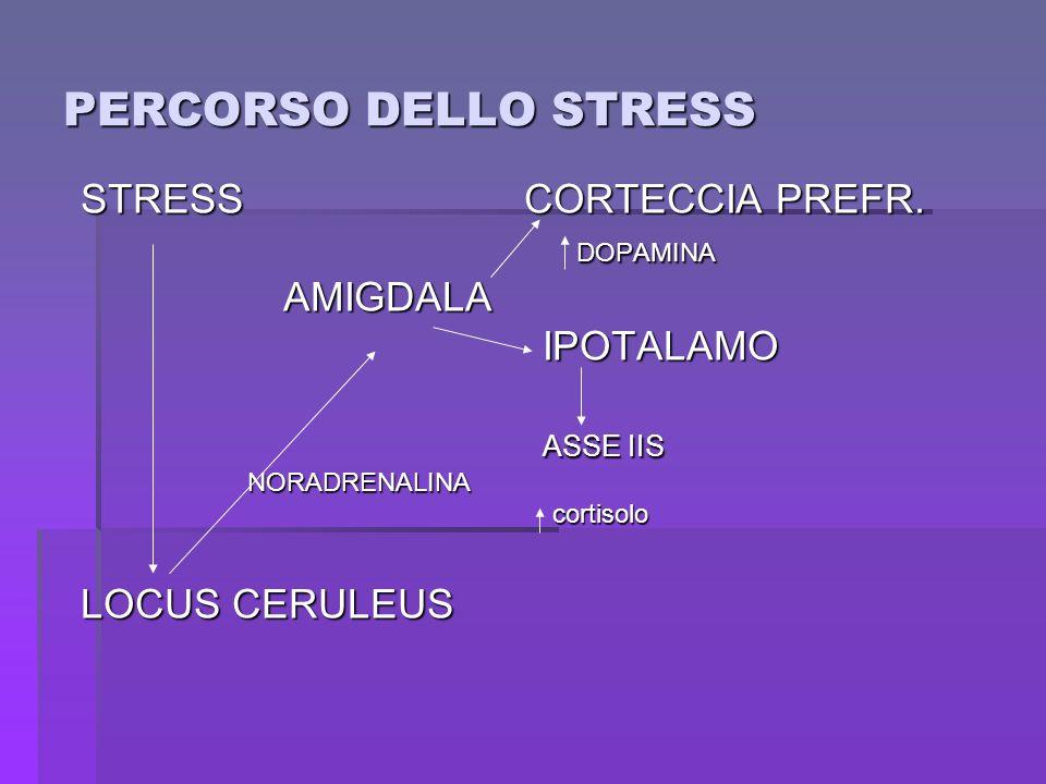 PERCORSO DELLO STRESS STRESS CORTECCIA PREFR. DOPAMINA DOPAMINA AMIGDALA AMIGDALA IPOTALAMO IPOTALAMO ASSE IIS ASSE IIS NORADRENALINA NORADRENALINA co