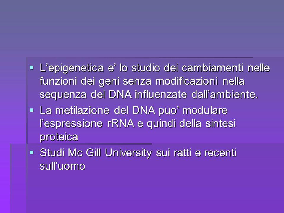  L'epigenetica e' lo studio dei cambiamenti nelle funzioni dei geni senza modificazioni nella sequenza del DNA influenzate dall'ambiente.  La metila