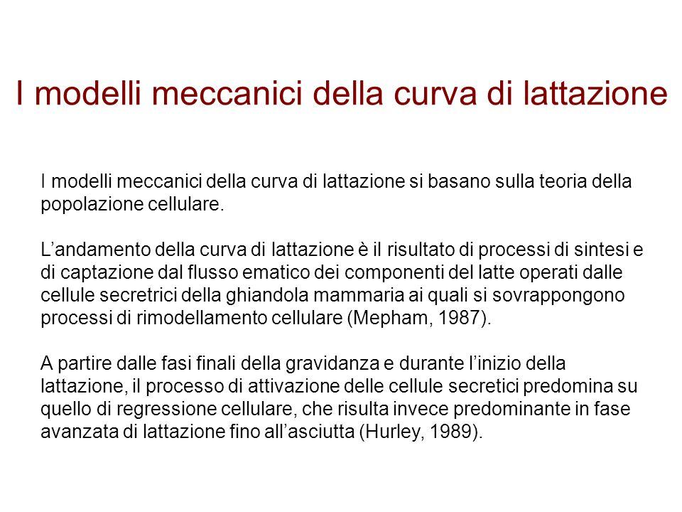 I modelli meccanici della curva di lattazione I modelli meccanici della curva di lattazione si basano sulla teoria della popolazione cellulare. L'anda