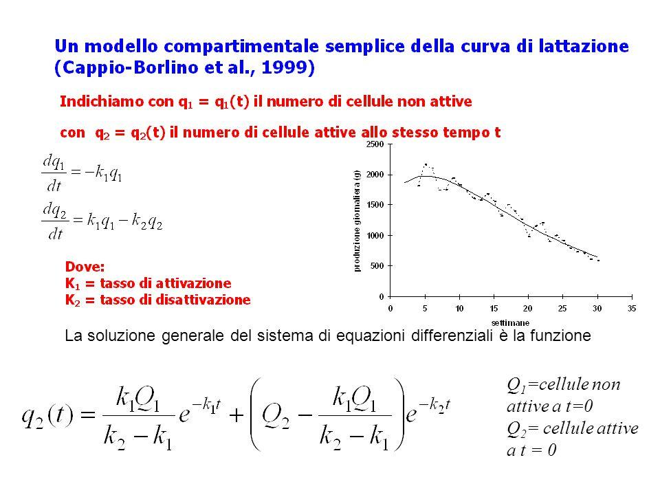 La soluzione generale del sistema di equazioni differenziali è la funzione Q 1 =cellule non attive a t=0 Q 2 = cellule attive a t = 0