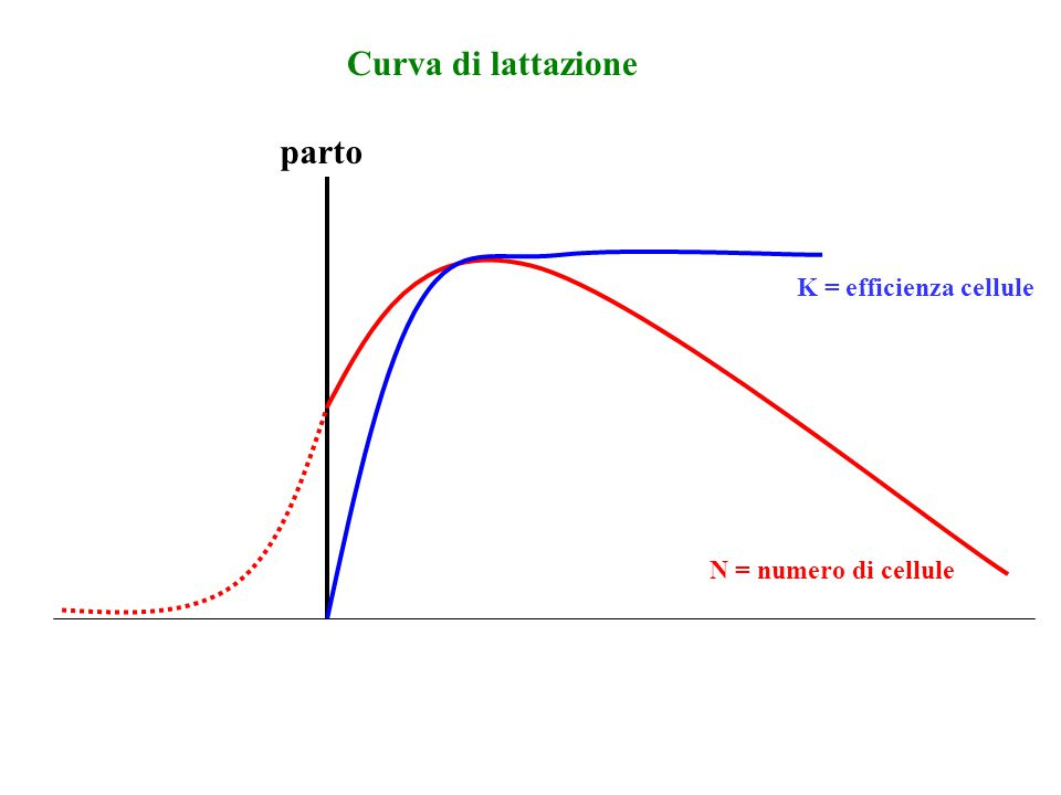 parto Curva di lattazione N = numero di cellule K = efficienza cellule