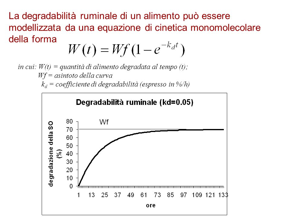 La degradabilità ruminale di un alimento può essere modellizzata da una equazione di cinetica monomolecolare della forma in cui: W(t) = quantità di al