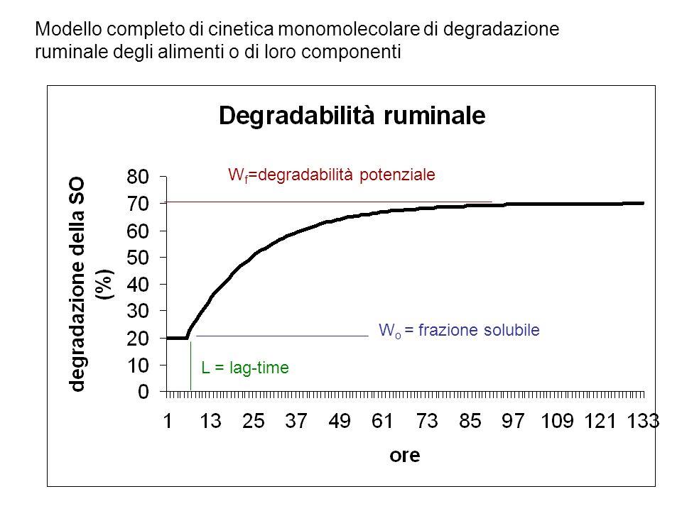 Modello completo di cinetica monomolecolare di degradazione ruminale degli alimenti o di loro componenti W f =degradabilità potenziale W o = frazione