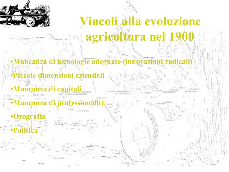 Vincoli alla evoluzione agricoltura nel 1900 Mancanza di tecnologie adeguate (innovazioni radicali) Piccole dimensioni aziendali Mancanza di capitali Mancanza di professionalità Orografia Politica