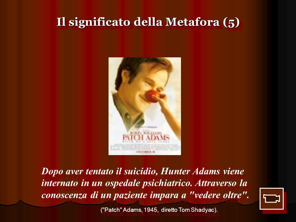 Il significato della Metafora (5) Dopo aver tentato il suicidio, Hunter Adams viene internato in un ospedale psichiatrico. Attraverso la conoscenza di