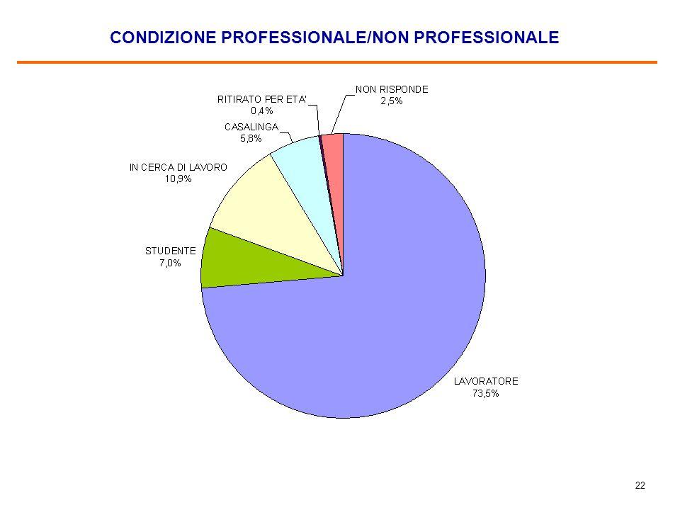 22 CONDIZIONE PROFESSIONALE/NON PROFESSIONALE