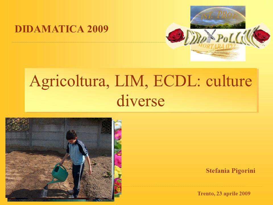 DIDAMATICA 2009 - Trento, 23/04/09S.Pigorini - Ist.