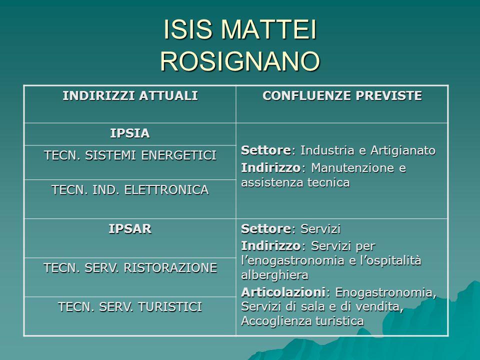 ISIS MATTEI ROSIGNANO INDIRIZZI ATTUALI CONFLUENZE PREVISTE IPSIA Settore: Industria e Artigianato Indirizzo: Manutenzione e assistenza tecnica TECN.