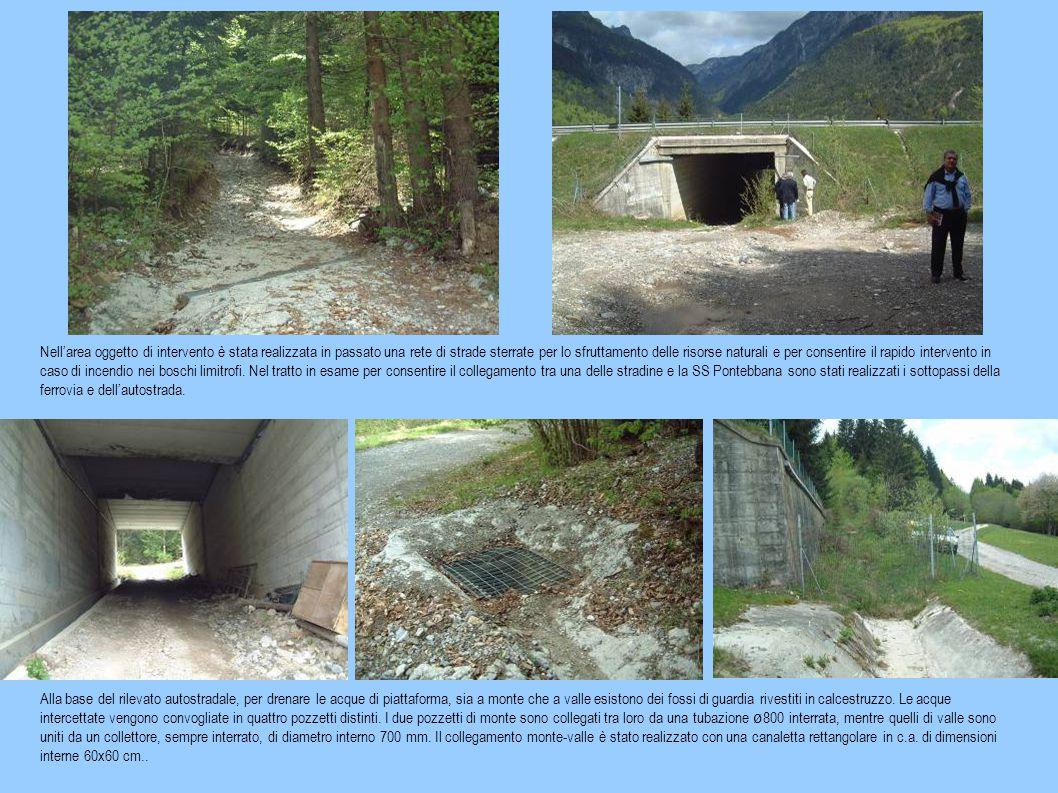 Nell'area oggetto di intervento è stata realizzata in passato una rete di strade sterrate per lo sfruttamento delle risorse naturali e per consentire il rapido intervento in caso di incendio nei boschi limitrofi.