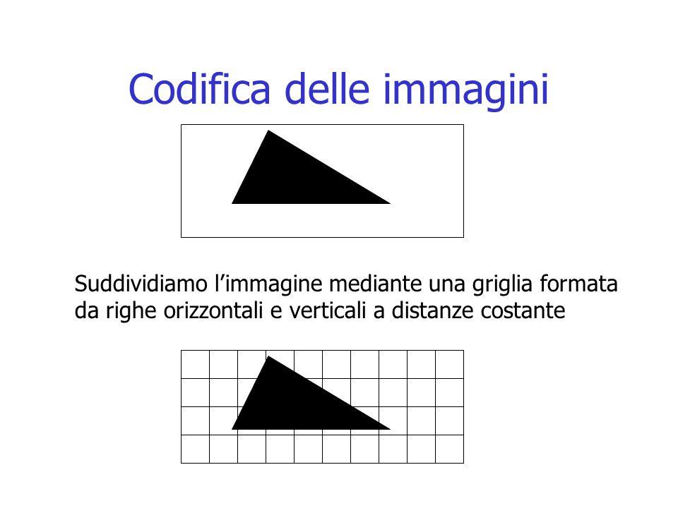 Codifica delle immagini Suddividiamo l'immagine mediante una griglia formata da righe orizzontali e verticali a distanze costante