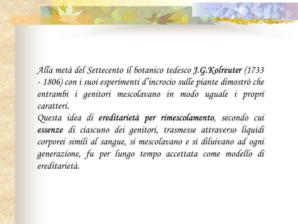 Alla metà del Settecento il botanico tedesco J.G.Kolreuter (1733 - 1806) con i suoi esperimenti d'incrocio sulle piante dimostrò che entrambi i genitori mescolavano in modo uguale i propri caratteri.