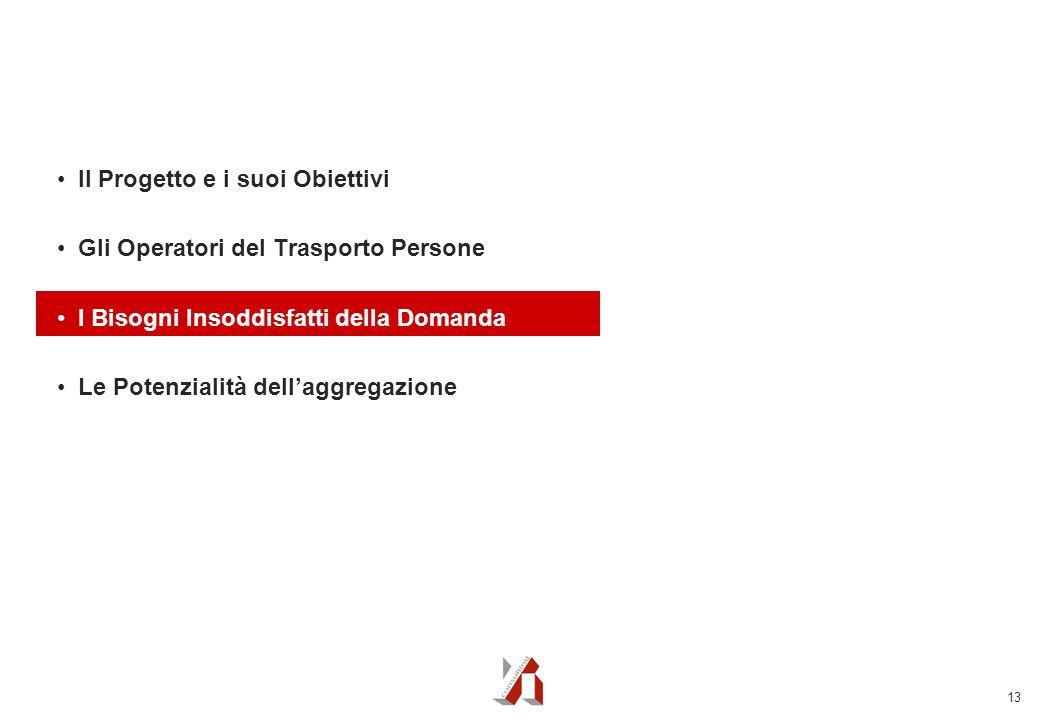 13 Il Progetto e i suoi Obiettivi Gli Operatori del Trasporto Persone I Bisogni Insoddisfatti della Domanda Le Potenzialità dell'aggregazione