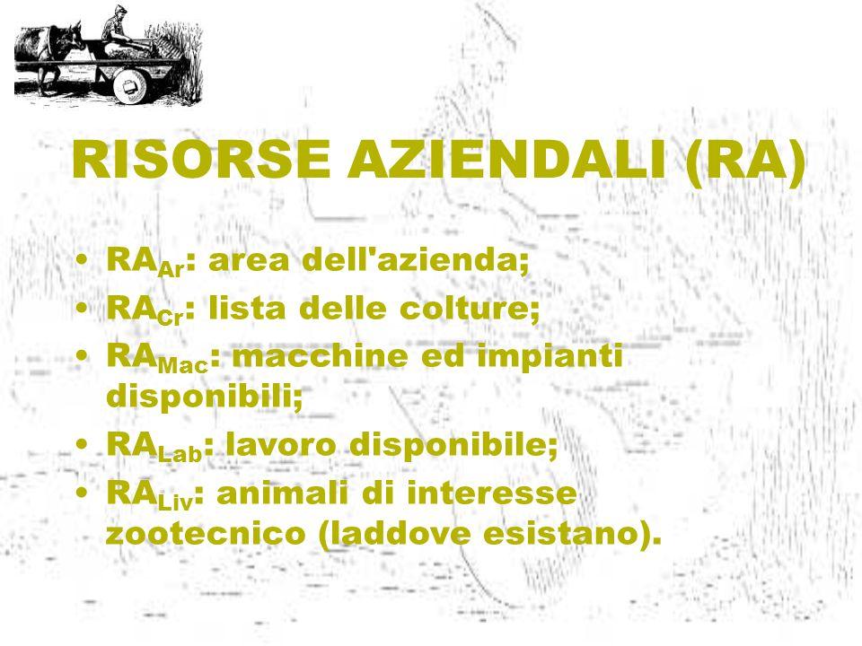 RISORSE AZIENDALI (RA) RA Ar : area dell azienda; RA Cr : lista delle colture; RA Mac : macchine ed impianti disponibili; RA Lab : lavoro disponibile; RA Liv : animali di interesse zootecnico (laddove esistano).