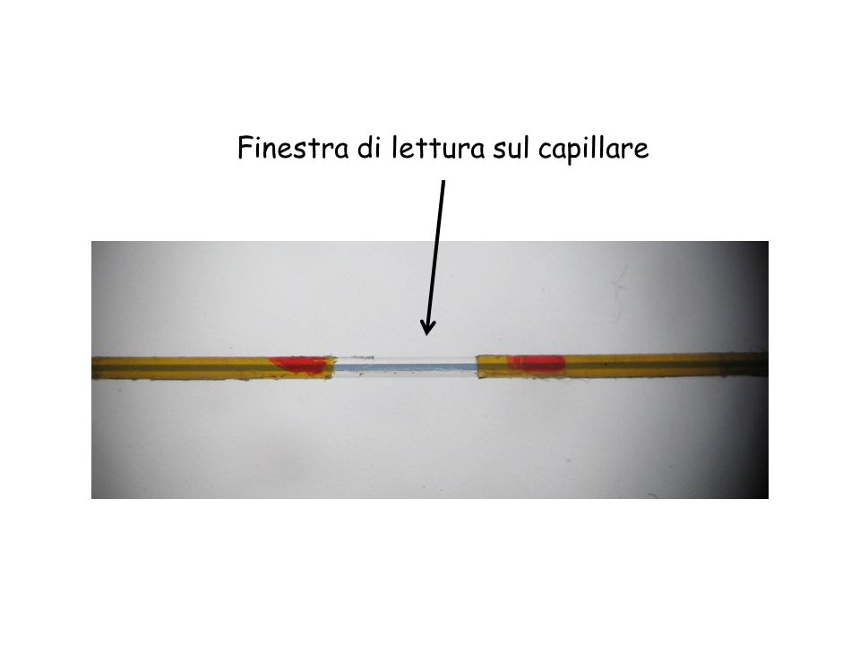 Finestra di lettura sul capillare