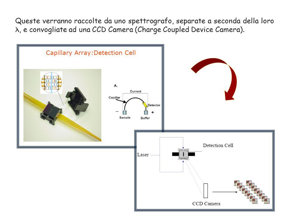 Queste verranno raccolte da uno spettrografo, separate a seconda della loro, e convogliate ad una CCD Camera (Charge Coupled Device Camera).
