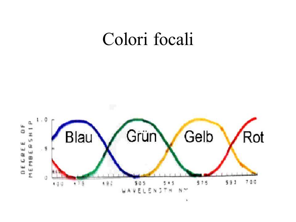 Colori focali
