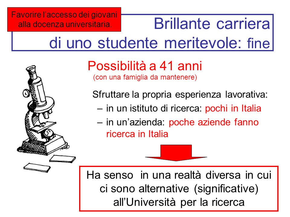 Brillante carriera di uno studente meritevole: fine Sfruttare la propria esperienza lavorativa: –in un istituto di ricerca: pochi in Italia –in un'azi