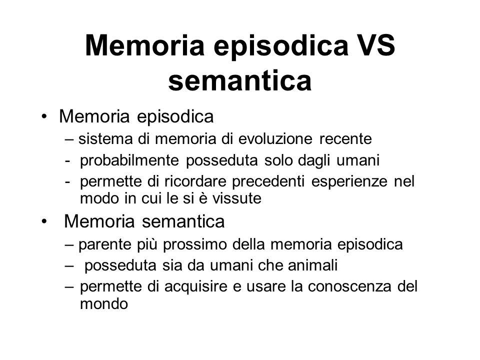 Memoria episodica VS semantica Memoria episodica – sistema di memoria di evoluzione recente -probabilmente posseduta solo dagli umani -permette di ricordare precedenti esperienze nel modo in cui le si è vissute Memoria semantica – parente più prossimo della memoria episodica – posseduta sia da umani che animali –permette di acquisire e usare la conoscenza del mondo