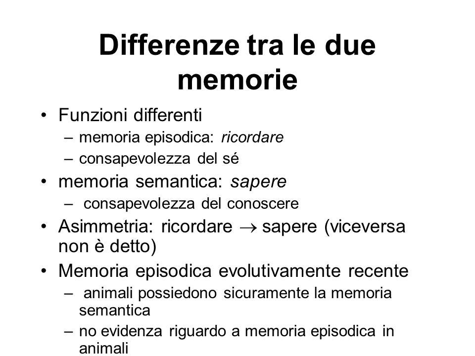 Differenze tra le due memorie Funzioni differenti –memoria episodica: ricordare –consapevolezza del sé memoria semantica: sapere – consapevolezza del conoscere Asimmetria: ricordare  sapere (viceversa non è detto) Memoria episodica evolutivamente recente – animali possiedono sicuramente la memoria semantica –no evidenza riguardo a memoria episodica in animali