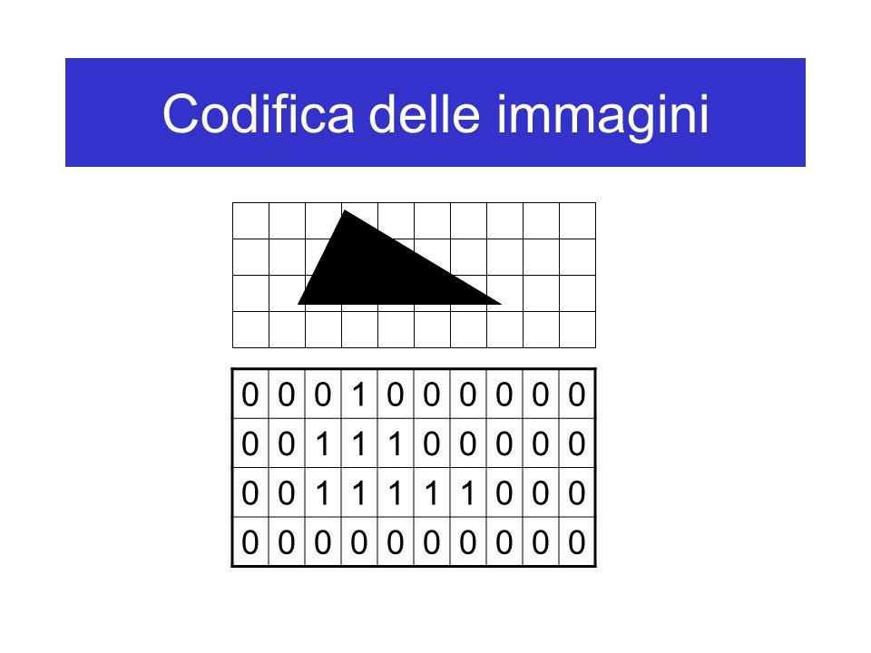 Codifica delle immagini Esempio: –Per distinguere 256 colori sono necessari otto bit per la codifica di ciascun pixel –La codifica di un'immagine di 256 colori, formata da 640 x 480 pixel, richiederà 640 x 480 = 307.200 byte (2.457.600 bit) Per essere riprodotta (per esempio, sullo schermo), la rappresentazione binaria di un'immagine deve anche avere informazioni sul: –Numero di righe dell'immagine –Numero di colonne dell'immagine –Numero di colori usati