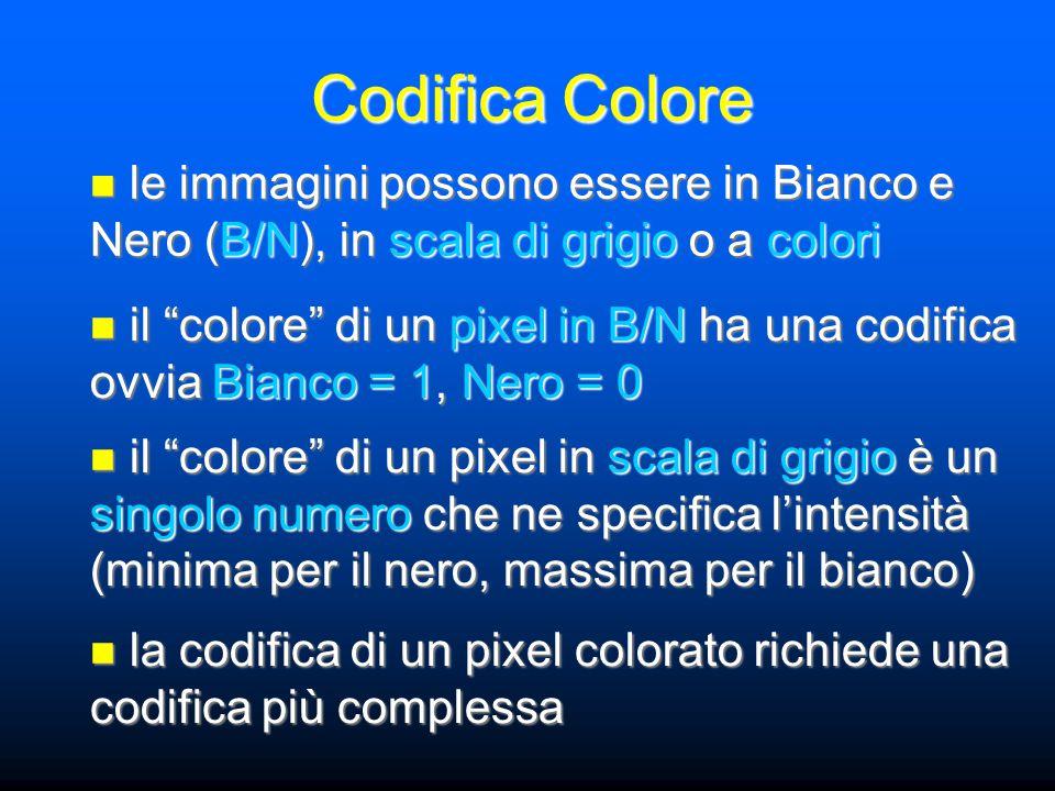Codifica Colore le immagini possono essere in Bianco e Nero (B/N), in scala di grigio o a colori le immagini possono essere in Bianco e Nero (B/N), in scala di grigio o a colori il colore di un pixel in B/N ha una codifica ovvia Bianco = 1, Nero = 0 il colore di un pixel in B/N ha una codifica ovvia Bianco = 1, Nero = 0 il colore di un pixel in scala di grigio è un singolo numero che ne specifica l'intensità (minima per il nero, massima per il bianco) il colore di un pixel in scala di grigio è un singolo numero che ne specifica l'intensità (minima per il nero, massima per il bianco) la codifica di un pixel colorato richiede una codifica più complessa la codifica di un pixel colorato richiede una codifica più complessa